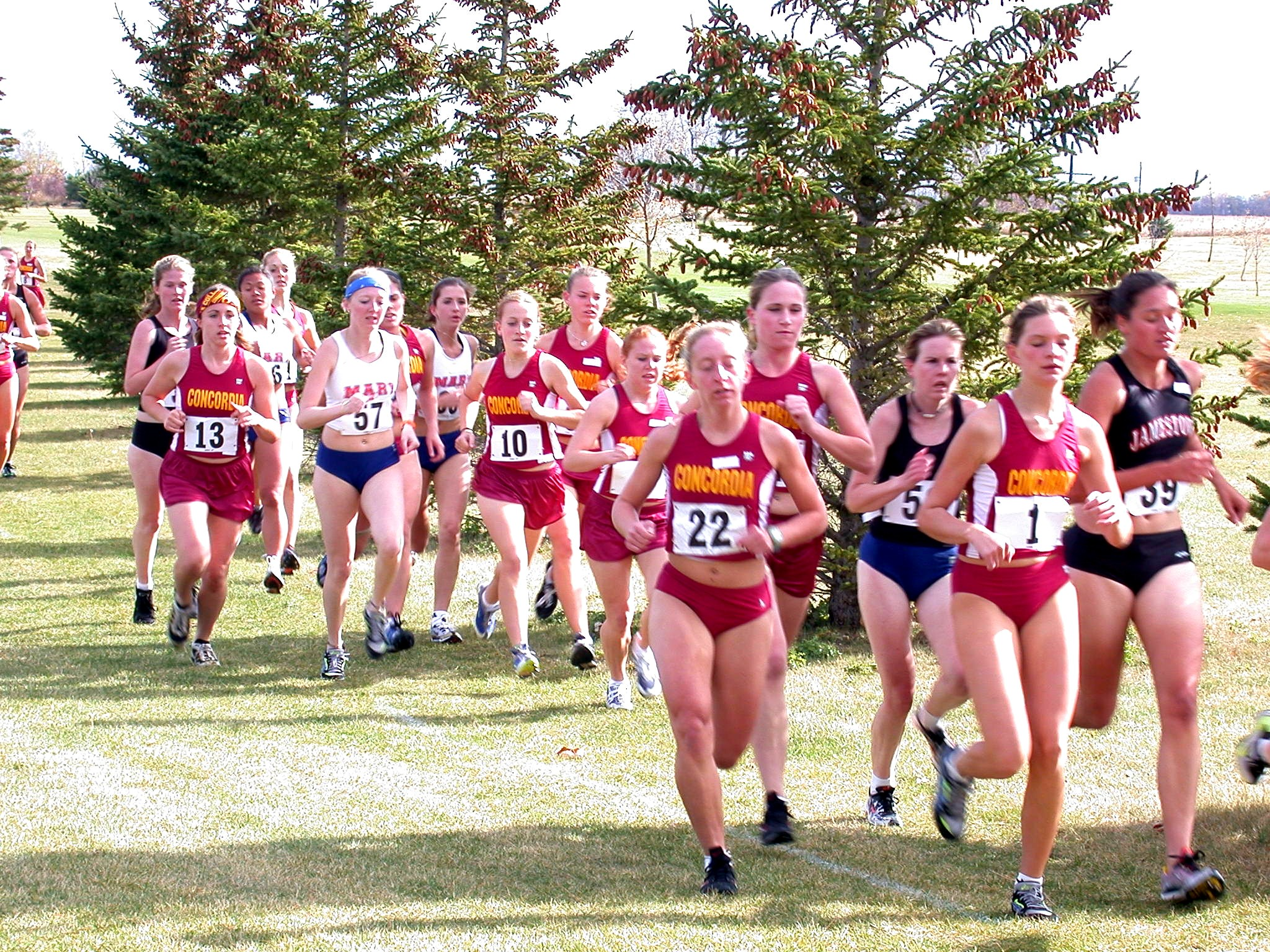 2003 Concordia Women's Cross Country Box Scores and Game ...